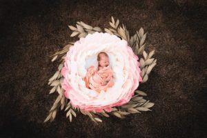 Babyfoto Halle Babyfotograf