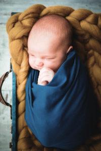 Babyfotos in Halle Babyfotograf